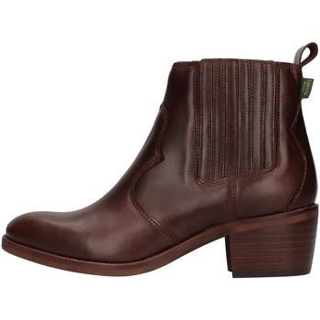Topánky Ženy Čižmičky Dakota Boots DKT73 BROWN