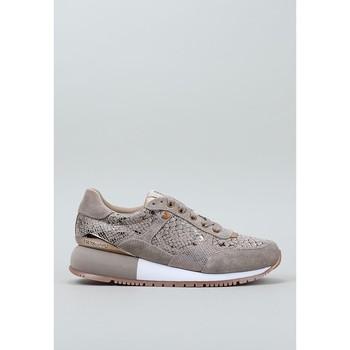 Topánky Ženy Nízke tenisky Gioseppo, S.l.  Béžová