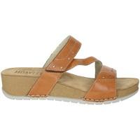 Topánky Ženy Šľapky Novaflex FALERONE Brown leather