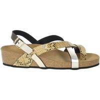 Topánky Ženy Sandále Novaflex BOZZOLE Platinum