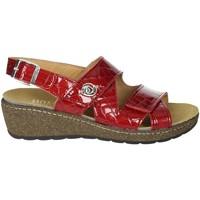 Topánky Ženy Sandále Novaflex FORIO Red