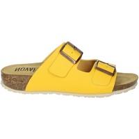 Topánky Ženy Šľapky Novaflex FELETTO Yellow