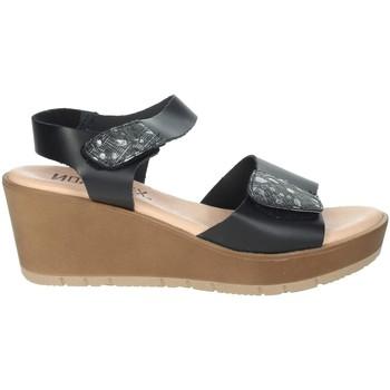Topánky Ženy Sandále Novaflex BASSIGNANA Black