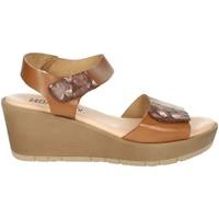 Topánky Ženy Sandále Novaflex BASSIGNANA Brown leather