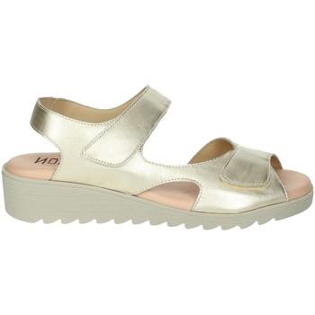 Topánky Ženy Sandále Novaflex BASSIANO Platinum