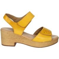 Topánky Ženy Sandále Novaflex BASCHI Mustard