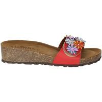 Topánky Ženy Šľapky Novaflex AMPEZZO Red