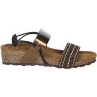 Topánky Ženy Sandále Novaflex AMBIVERE Bronze