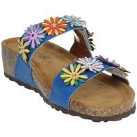 Topánky Ženy Sandále Novaflex ANDORNO Blue