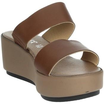 Topánky Ženy Šľapky Novaflex ACQUARICA Brown