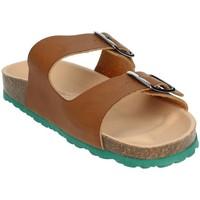 Topánky Muži Šľapky Novaflex BRENNA Brown leather