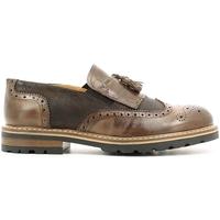 Topánky Muži Derbie Rogers 187 Hnedá