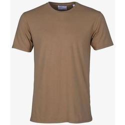 Oblečenie Tričká s krátkym rukávom Colorful Standard T-shirt  Sahara Camel marron