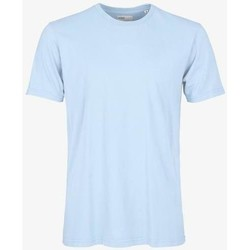 Oblečenie Tričká s krátkym rukávom Colorful Standard T-shirt  Polar Blue bleu pâle
