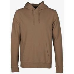 Oblečenie Mikiny Colorful Standard Sweatshirt à capuche  Sahara Camel marron clair