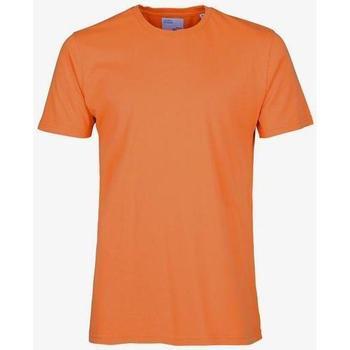Oblečenie Tričká s krátkym rukávom Colorful Standard T-shirt  Burned Orange orange