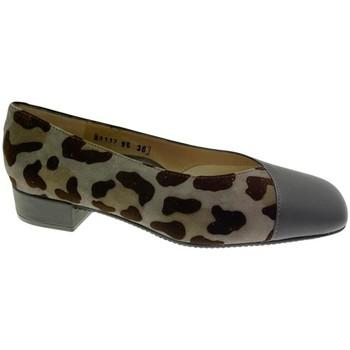 Topánky Ženy Balerínky a babies Calzaturificio Loren LOA1117 grigio
