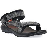 Topánky Muži Sandále Lizard GRY FREY RIDE II Grigio