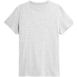 Oblečenie Muži Tričká s krátkym rukávom 4F TSM352 Sivá