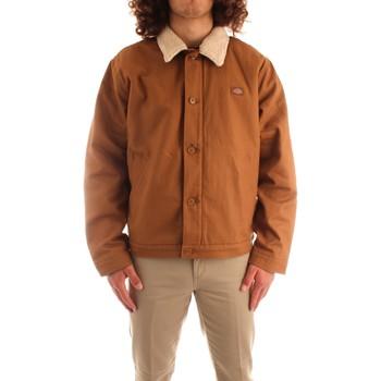 Oblečenie Muži Bundy  Dickies DK0A4XFYBD01 BROWN