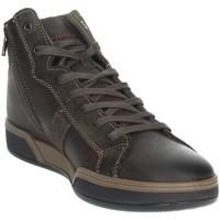 Topánky Muži Členkové tenisky Imac 802880 Brown