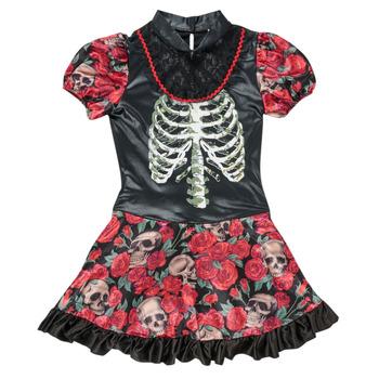 Oblečenie Dievčatá Kostýmy Fun Costumes COSTUME ADOLESCENT NINA CATRINA Viacfarebná