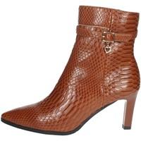 Topánky Ženy Polokozačky Braccialini I58 Brown leather