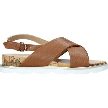 Topánky Ženy Sandále Alviero Martini E894 9543 Hnedá