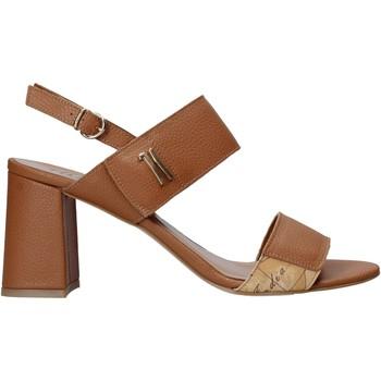 Topánky Ženy Sandále Alviero Martini E124 587A Hnedá