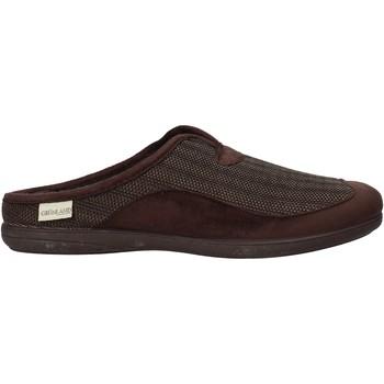 Topánky Muži Papuče Grunland CI1056 Hnedá
