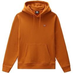 Oblečenie Muži Mikiny Dickies DK0A4XCDB831 Oranžová