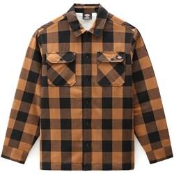 Oblečenie Muži Košele s dlhým rukávom Dickies DK0A4XGRBD01 Hnedá