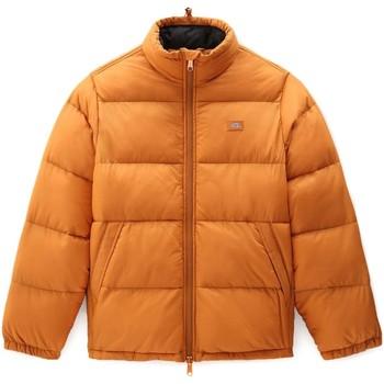 Oblečenie Muži Vyteplené bundy Dickies DK0A4XP2B831 Oranžová