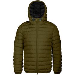 Oblečenie Muži Vyteplené bundy Invicta 4431806/U Zelená