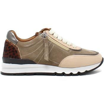 Topánky Ženy Nízke tenisky Grunland SC5237 Hnedá
