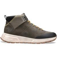 Topánky Muži Členkové tenisky Docksteps DSM000702 Šedá