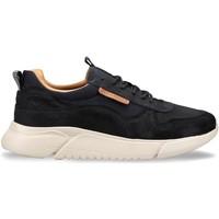 Topánky Muži Nízke tenisky Docksteps DSM000102 Modrá
