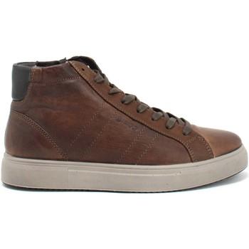 Topánky Muži Členkové tenisky IgI&CO 8126833 Hnedá