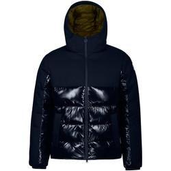Oblečenie Muži Vyteplené bundy Invicta 4431841/U Modrá
