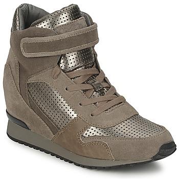 Topánky Ženy Členkové tenisky Ash DRUM Hnedá / Zlatá