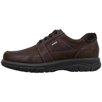 Topánky Muži Mokasíny Imac  Hnedá