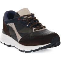 Topánky Muži Univerzálna športová obuv Exton COMBI 5 TERRA Marrone