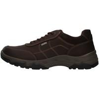Topánky Muži Turistická obuv Enval 8218022 BROWN