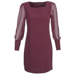 Oblečenie Ženy Krátke šaty Mexx JAJAVA Bordová