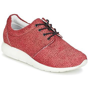 Topánky Ženy Nízke tenisky Maruti WING Červená