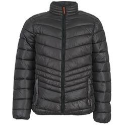 Oblečenie Muži Vyteplené bundy Yurban DALE Čierna
