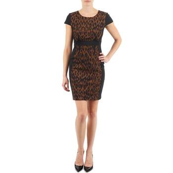 Oblečenie Ženy Krátke šaty Manoukian EMMA Čierna / Leopard