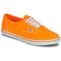 Topánky Ženy Nízke tenisky Vans AUTHENTIC LO PRO Oranžová / Pop