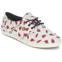 Topánky Ženy Nízke tenisky Faguo CYPRESS Biela / červená
