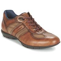 Topánky Muži Derbie Lloyd ARMAND Oranžová koňaková